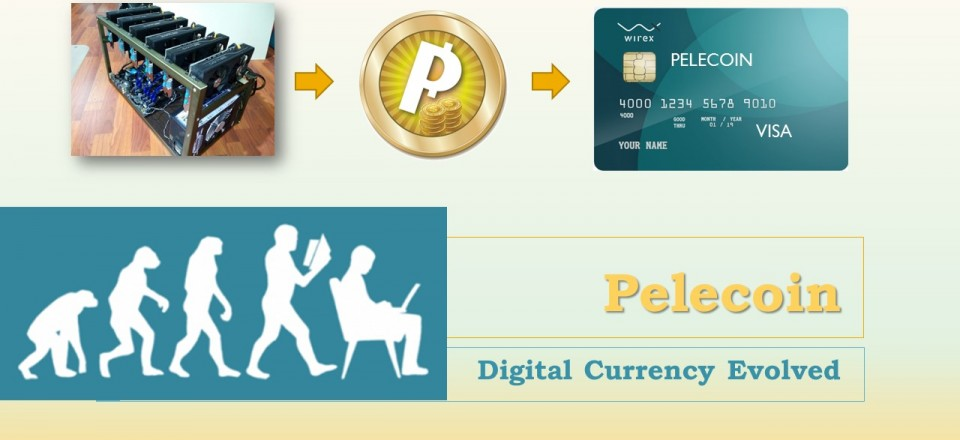 Pelecoin Digital Currency